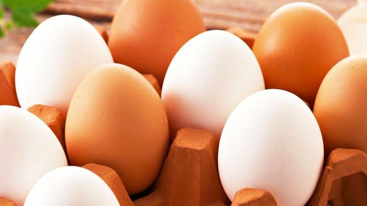 Yumurtanın iyisini sarısından anlayın!