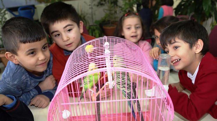 Okulda 'doğal yaşam alanı' oluşturdular