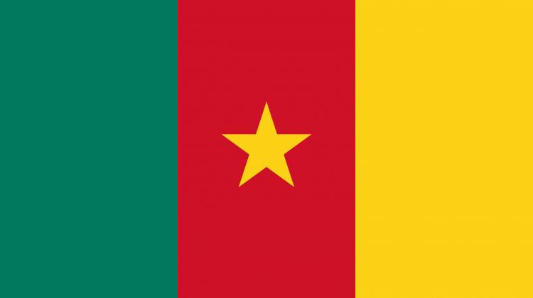 Kamerun'da mayın patladı!