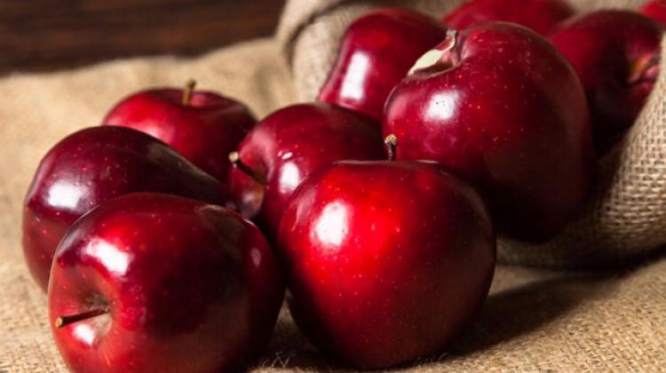 Elma 5 kanser türüyle birden savaşıyor