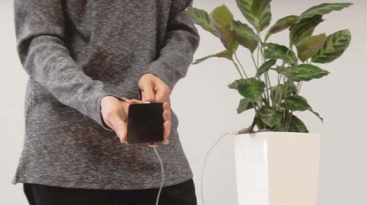 Telefonlar artık saksıdan şarj olacak!