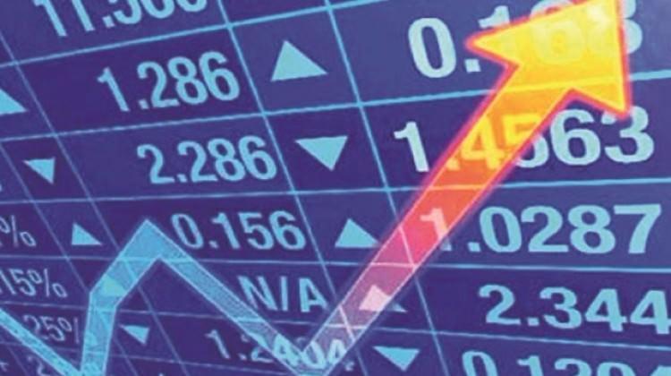 Referandum sonrası piyasalar çoştu