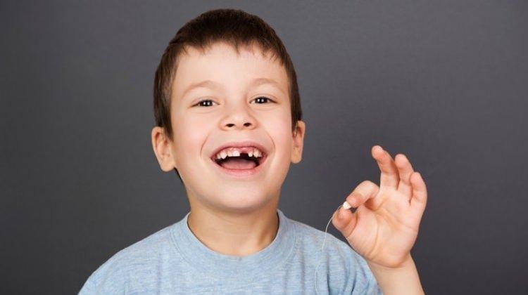 Çocuğunuzun dişlerini sakın çöpe atmayın!