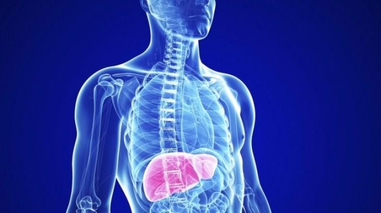 Oruç tutarak karaciğer yağlanmasına engel olun!