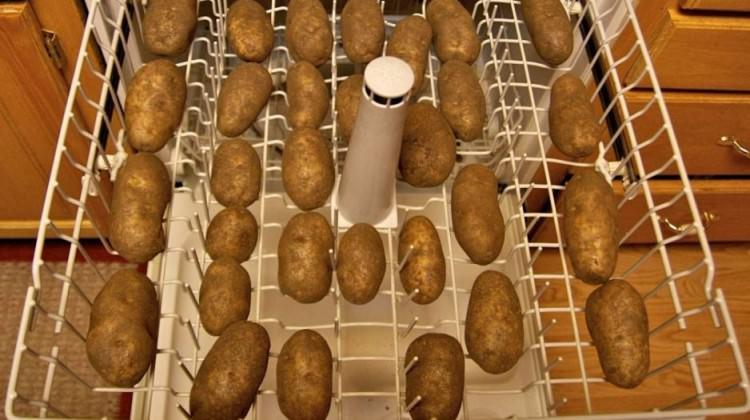 Bulaşık makinesine patates koyarsanız...