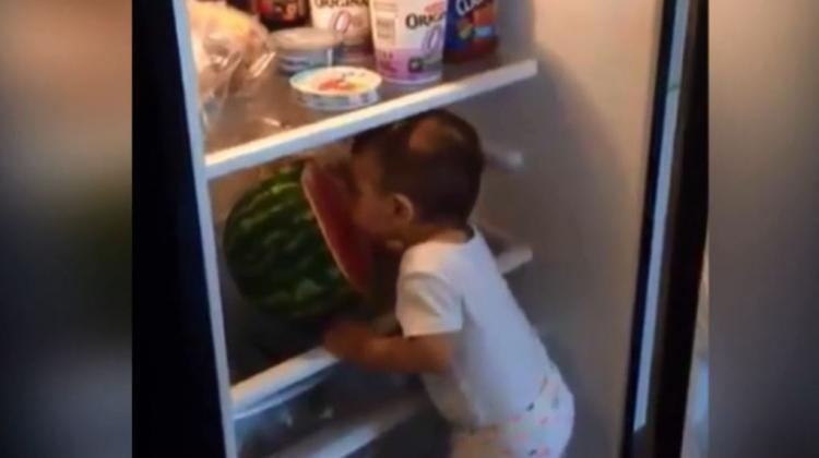 Buzdolabından karpuz aşıran minik