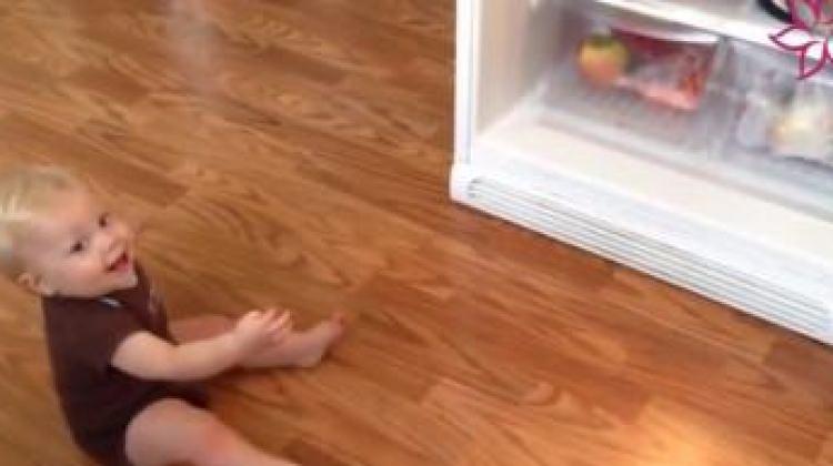 Buzdolabı kapanınca çıldırdı!