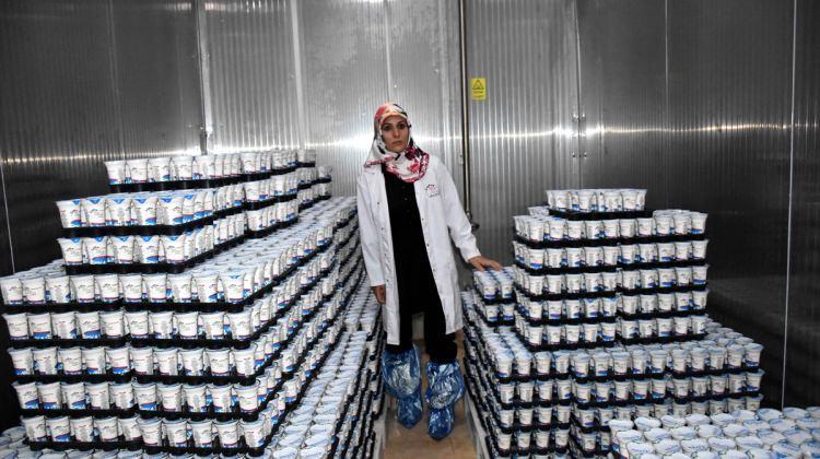 GİRİŞİMCİ KADINLAR - Muş'ta kurduğu fabrikada 20 kişiyi iş sahibi yaptı