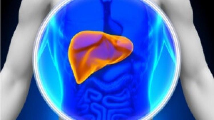 Karaciğer hastalıklarının belirtileri neler?