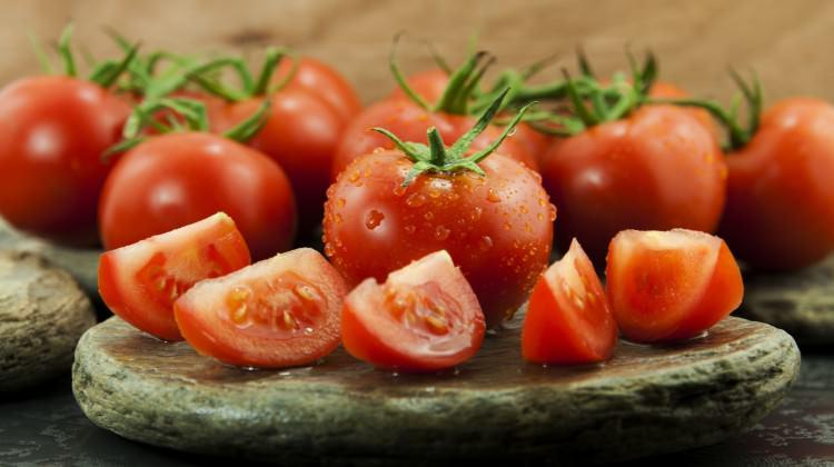 Domatesi lezzete ve kazanca dönüştüren yatırım