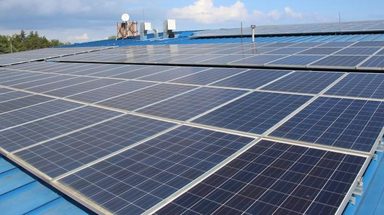 Çatıya kurduğu sistemle, yılda 130 bin TL kazandı