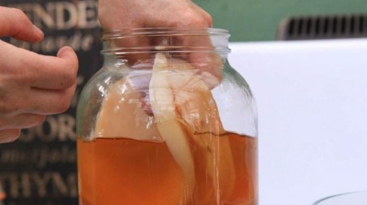 Kombu Çayı nedir? Kombu Çayı'nın mucize faydaları...