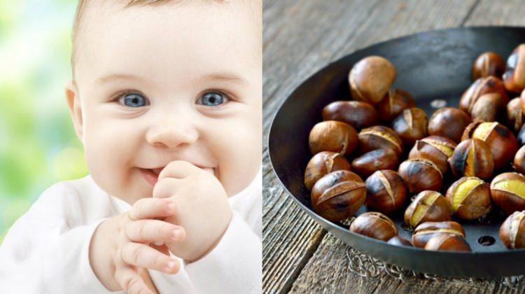 Bebeklere kestane yedirilmeli mi?