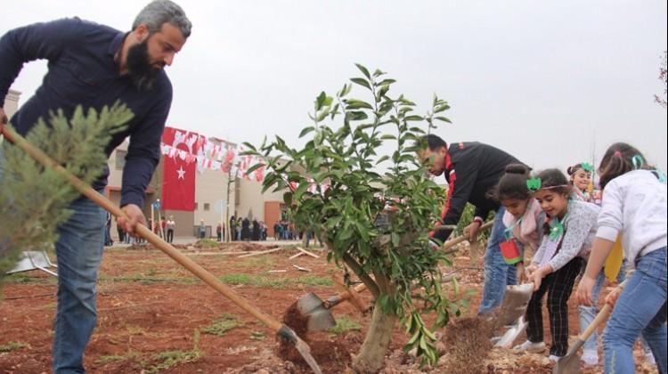 Çocuk hakları gününde Suriyeli yetimler ağaç dikti