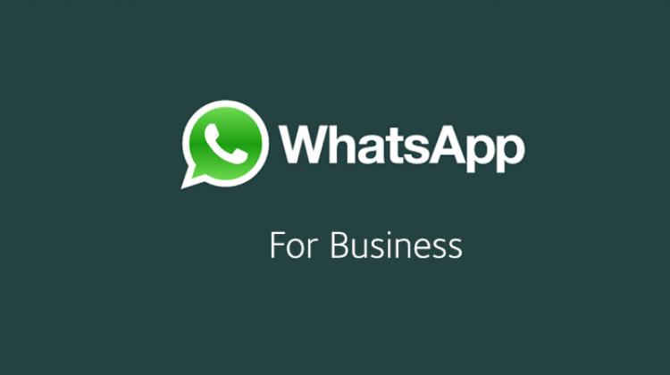 WhatsApp Business sürümü çıktı! Kimler yararlanabilir, ücretsiz mi, özellikleri?