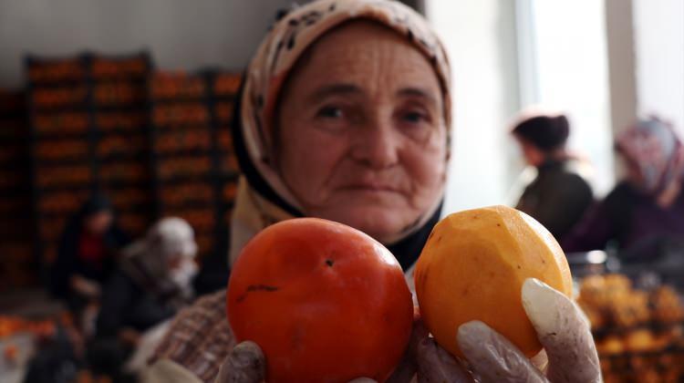 Cennet elmasını kurutup internette satıyor...