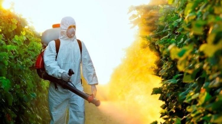 Uzmanlar açıkladı! Pestisit bulunan besinler nelerdir?