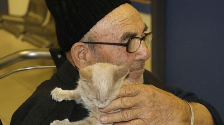 İbrahim Kalın aradı Ali Dede kedisine kavuştu