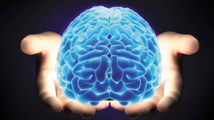 Beyniniz Nasıl Çalışır? Efsaneler ve Gerçekler…