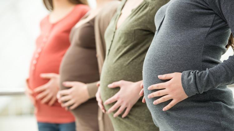 Hamilelikte hafta hafta bebeğin gelişimi