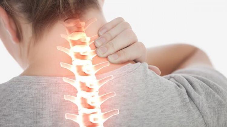 Boyun ağrısını geçiren bitkisel kürler