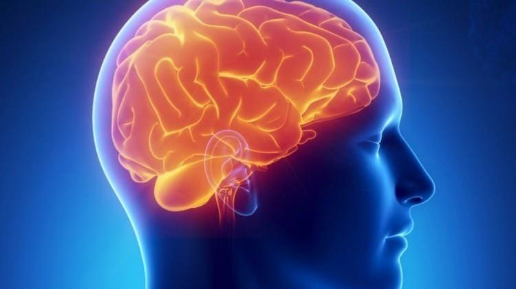 Beyin sağlığını korumak için ne yapılmalı?