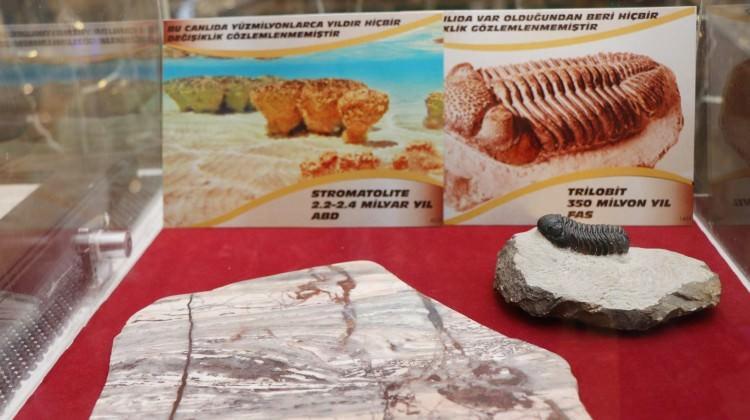 Nevşehir'de sergileniyor! Tam 2 milyar yıllık...