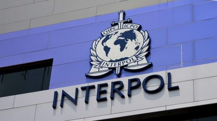 Teröristlere İnterpol kalkanı
