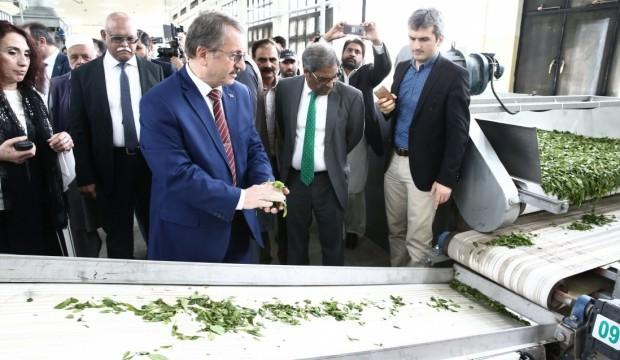 Çaykur Pakistan'da çay fabrikası açtı