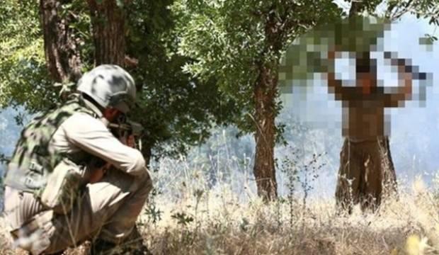 PKK'ya soğuk duş! Kaçıp teslim oldular...