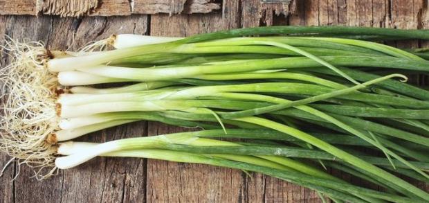 yeşil soğan