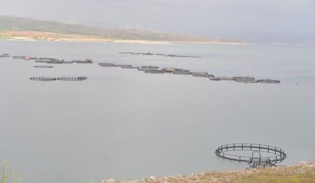 Denizi yok ama balık ihracatında ilk 3'te