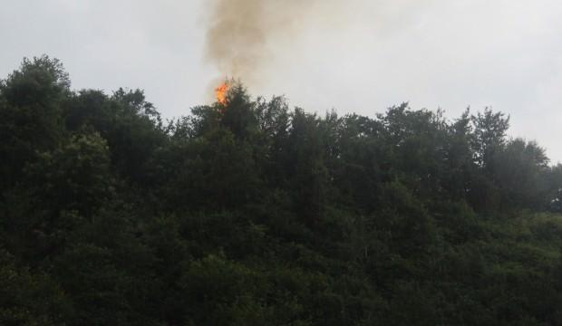 Rize'de yıldırım orman yaktı