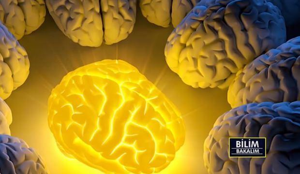 İnsan beyninin gizemi ve özellikleri