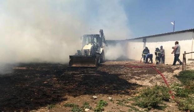Çiftlikteki yangında çok sayıda küçükbaş öldü
