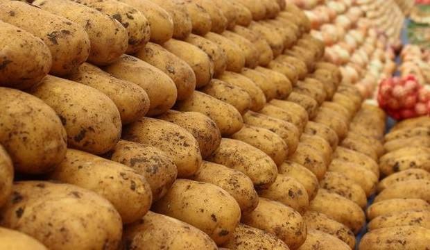 Patates fiyatlarına fren geldi!