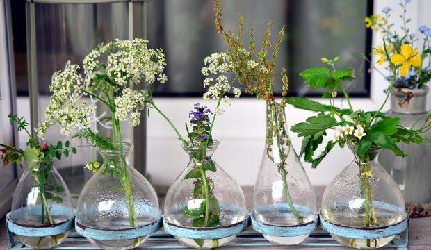 Vazo çiçeklerinin solmaması için ne yapılmalı?