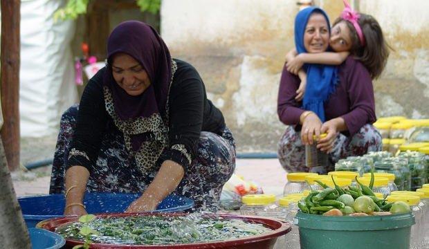 Bu kadınlar 30 bin ton turşu üretiyor!