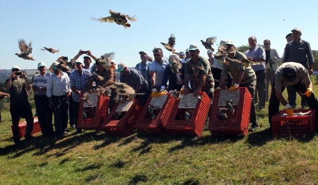 Keklikler komşu ülke sınırında kanat çırpacak