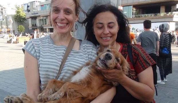 2 bin lira ödüllü köpek bakın nerede bulundu