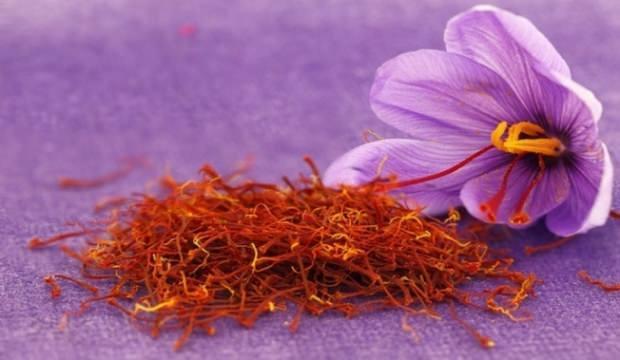 Safran çiçeğinin faydaları nelerdir?