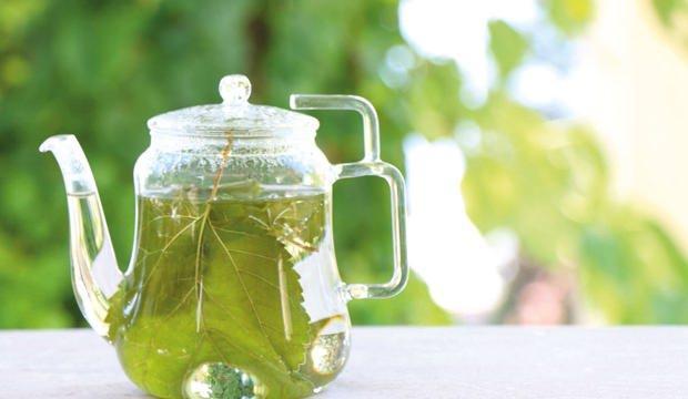 Dut yaprağının faydaları nelerdir? Dut yaprağı çayı nasıl yapılır? - SAĞLIK  Haberleri