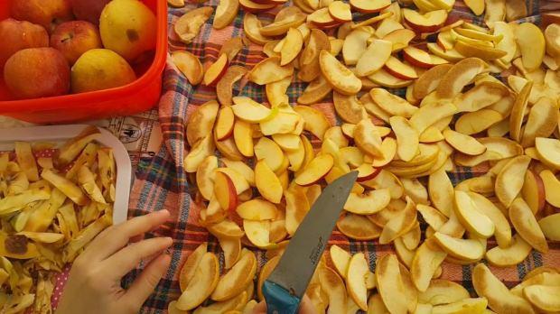 Elma nasıl kurutulur