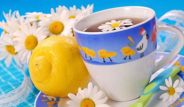 Hamilelerin bitki çayı içmesi zararlı mı?