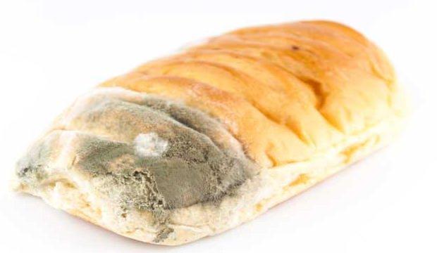 Küflü ekmek yenir mi?