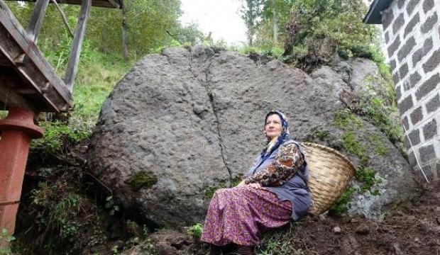 Dev kayayı görünce hayatlarının şokunu yaşadılar