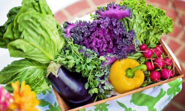 magnezyum hangi gıdalarda bulunur