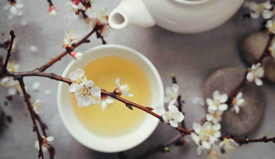 Beyaz çay içerek zayıflanır mı?