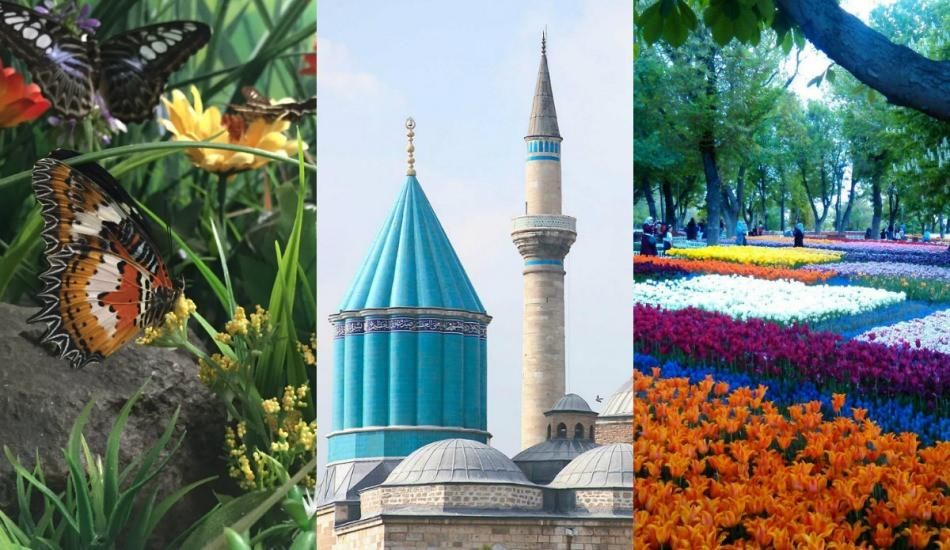 Konya'da gezi rehberi