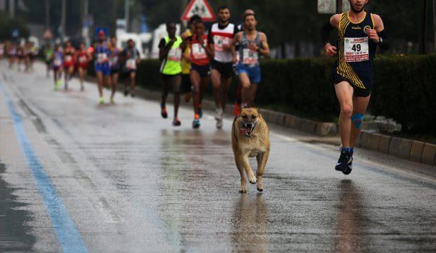 Uluslararası 5 Ocak Adana Kurtuluş Yarı Maratonu